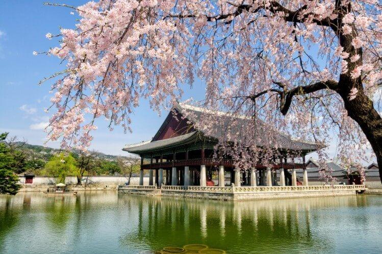 Ghé thăm kiến trúc cung điện Gyeongbok độc đáo nhất của Hàn Quốc