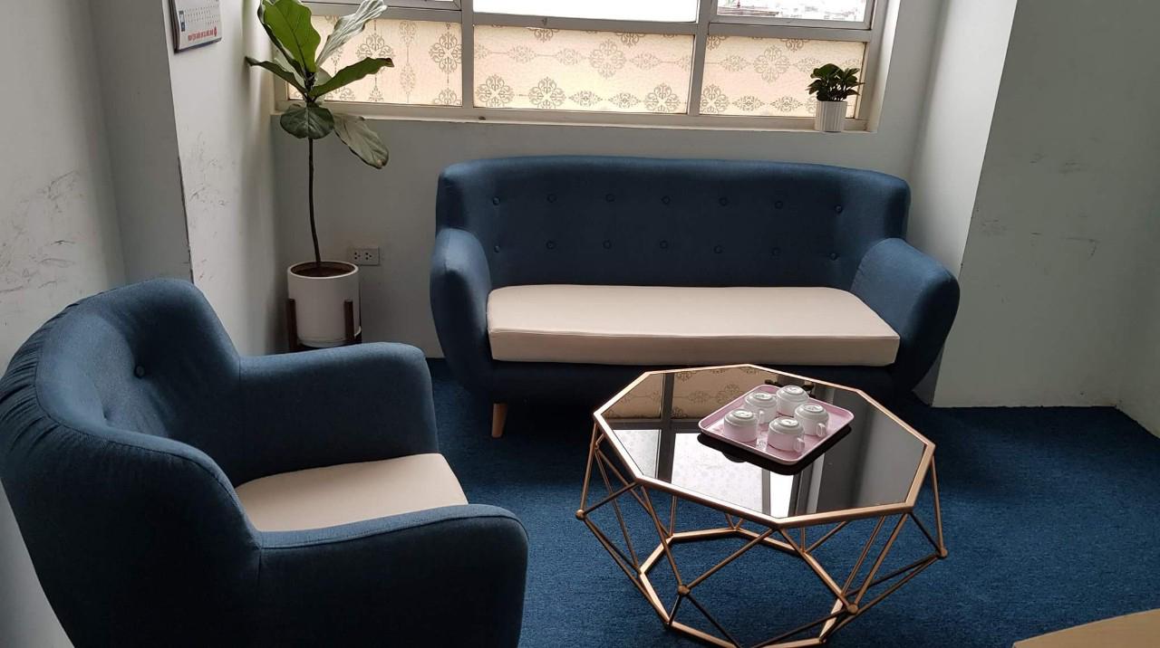 Các dòng Sofa được yêu thích sử dụng hiện nay