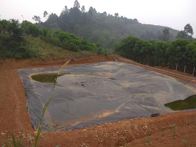 Những lợi ích của biogas có thể bạn chưa biết