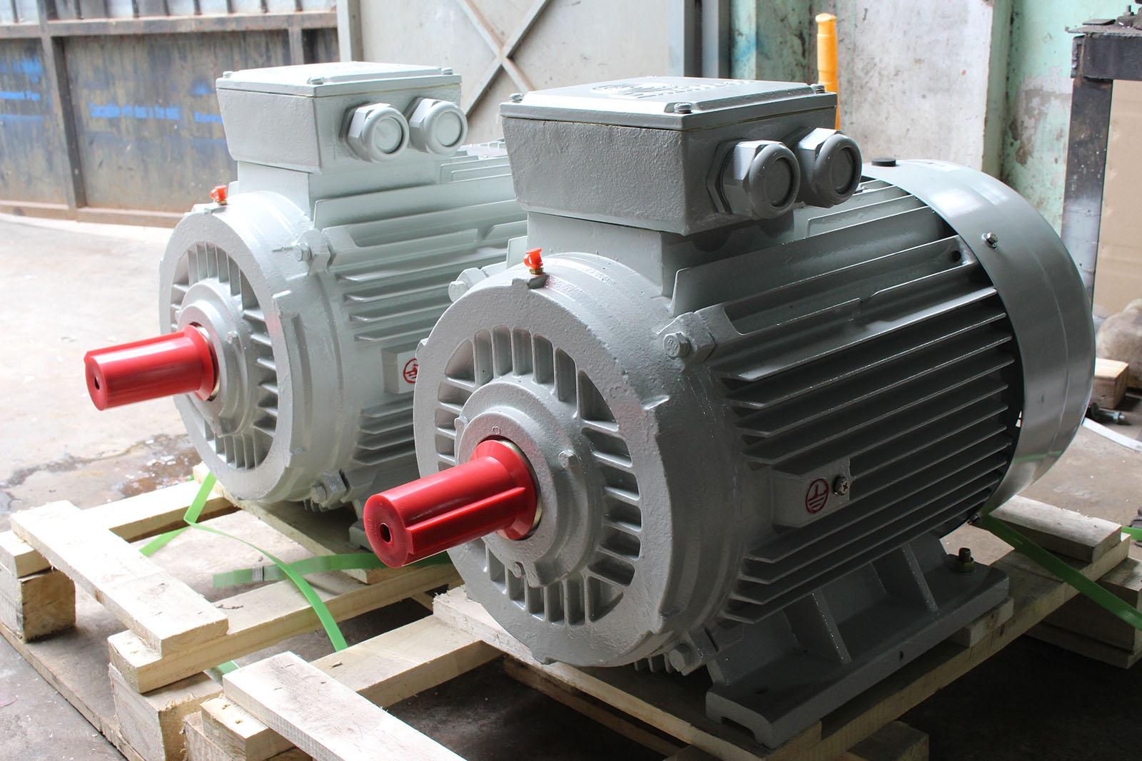 Động cơ điện 1 pha có cấu tạo như thế nào?